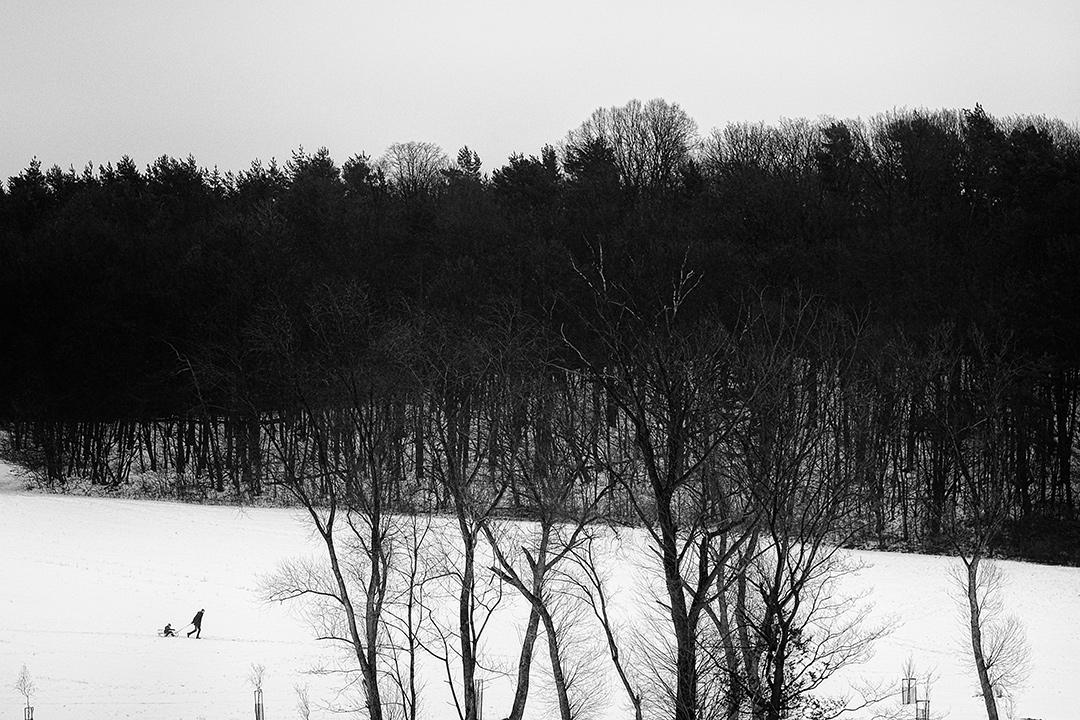 winter landscape by Roman Holý